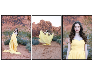 Valley of Fire _ Lizeth