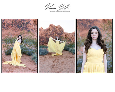Valley of Fire _ Lizeth_