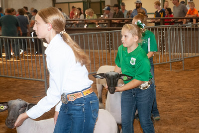 tulsa_20190930_sheep_showmanship-1