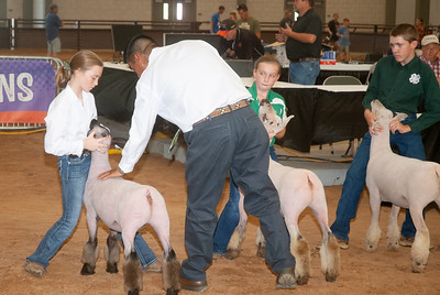 tulsa_20190930_sheep_showmanship-10