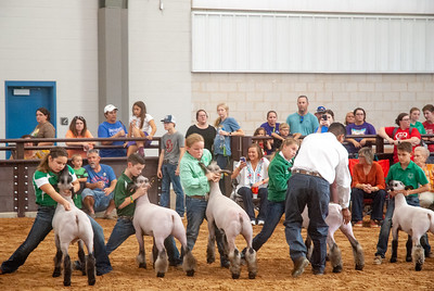 tulsa_20190930_sheep_showmanship-7