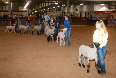 tulsa_20190930_sheep_showmanship-14