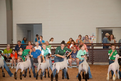 tulsa_20190930_sheep_showmanship-5