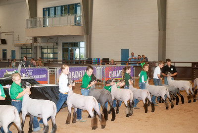 tulsa_20190930_sheep_showmanship-4