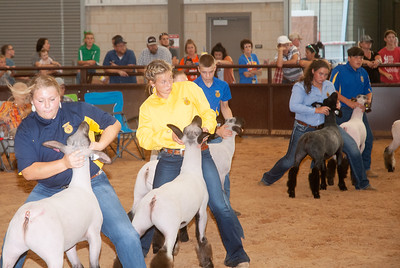 tulsa_20190930_sheep_showmanship-23