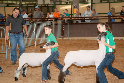 tulsa_20190930_sheep_showmanship-11
