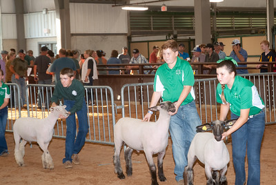 tulsa_20190930_sheep_showmanship-2