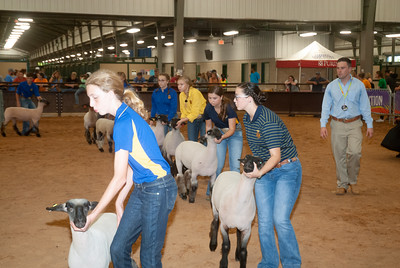 tulsa_20190930_sheep_showmanship-17