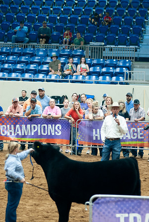 Tulsa_2019_steer_market-15