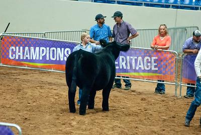 Tulsa_2019_steer_market-7