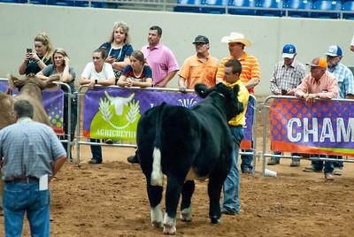 Tulsa_2019_steer_market-5