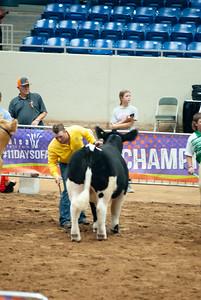 Tulsa_2019_steer_market-20