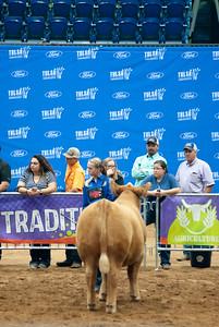 Tulsa_2019_steer_market-11
