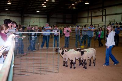 Tulsa_2019_livestock_judging-21