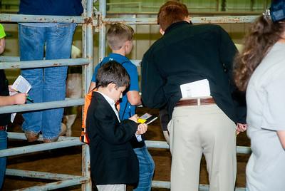 Tulsa_2019_livestock_judging-25