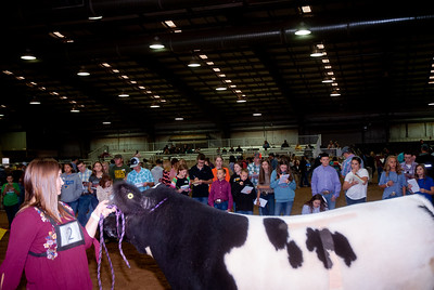 Tulsa_2019_livestock_judging-14