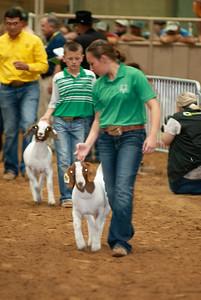Tulsa_20191002_grand-drive-goats-10