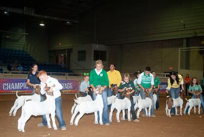Tulsa_20191002_grand-drive-goats-8