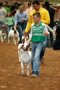 Tulsa_20191002_grand-drive-goats-11