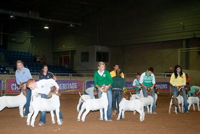 Tulsa_20191002_grand-drive-goats-7