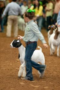 Tulsa_20191002_grand-drive-goats-13