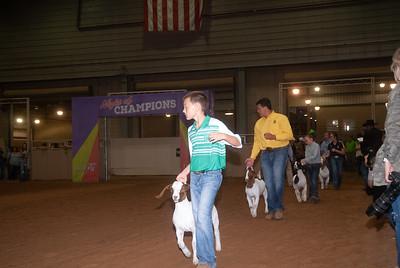 Tulsa_20191002_grand-drive-goats-2