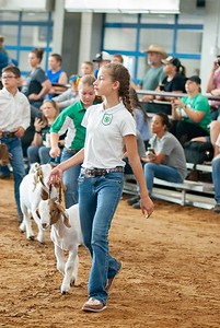 Tulsa_2019_goat_wether_showmanship-8