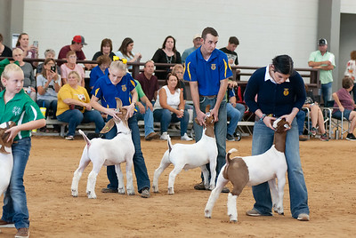 Tulsa_2019_goat_wether_day1-20