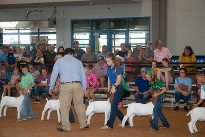 Tulsa_2019_goat_wether_day1-3