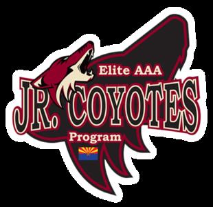 Phoenix Jr Coyotes