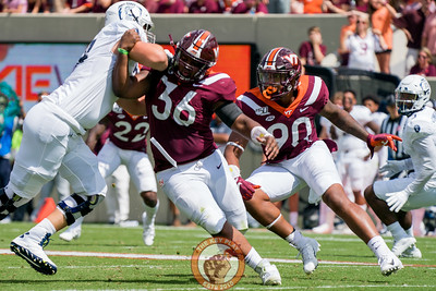 Jaevon Becton (90) and DaShawn Crawford (36) try to shed blocks during the matchup against Old Dominion University in Lane Stadium on Saturday, Sept. 7, 2019. (Photo: Cory Hancock)