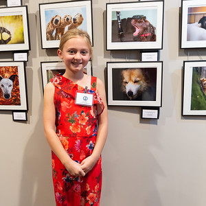 Dog Photographer of the Year Awards Ceremony 2019