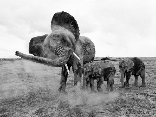 Africa-Kenya--017