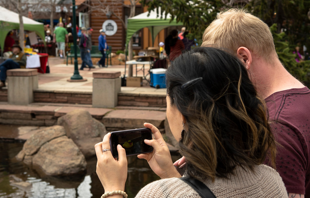 . An attendee takes a photo of a duck on her phone.