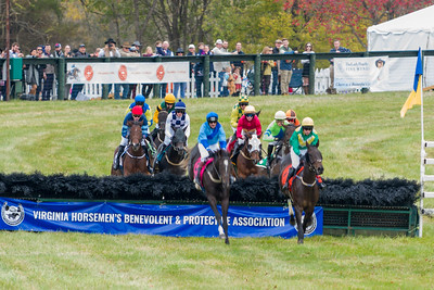 Steeplechase racing