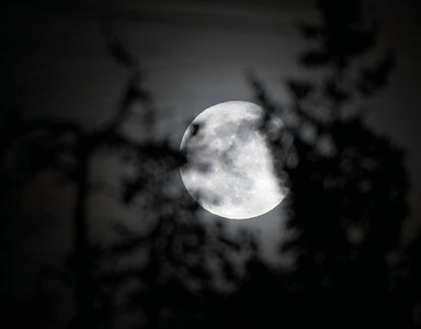 Full moon January 2019.  Citizen photo by Brent Braaten