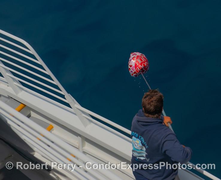 Balloon removal - 1