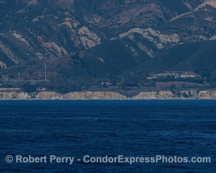 A look at a section of the Gaviota coast.  The red roof tiles are the old Vista del Mar School, now home to the Channel Islands Marine and Wildlife Institute (CIMWI).