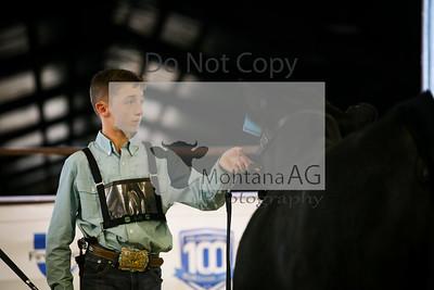 montanaag-10