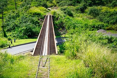 The Narrow gauge tracks