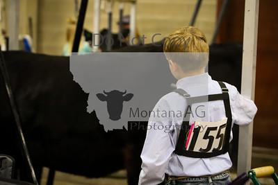 montanaag-131