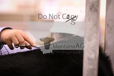 montanaag-55