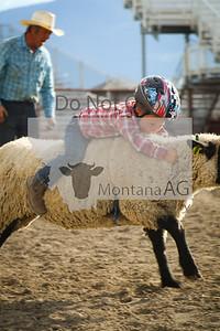 montanaag-373