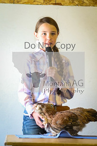 montanaag-47