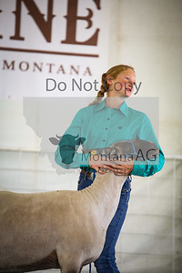 montanaag-15