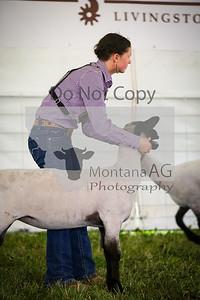 montanaag-25