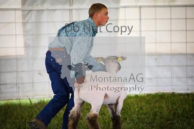 montanaag-1
