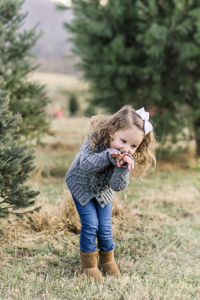 2019-christmas-portraits-37