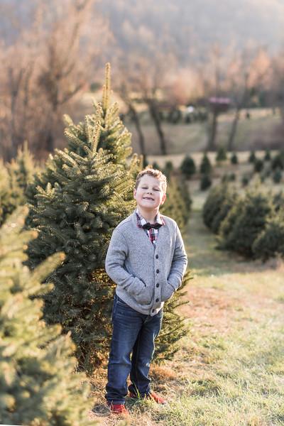 2019-christmas-portraits-23