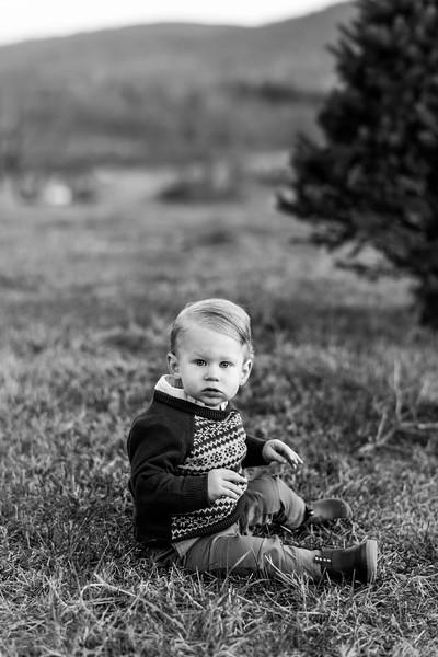 2019-christmas-portraits-17
